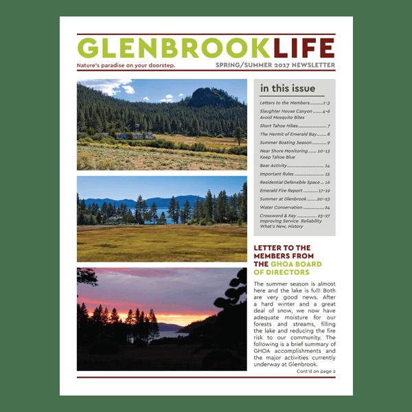 p1 Glenbrook HOA Newsletter